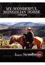 My wonderful mongolian horse